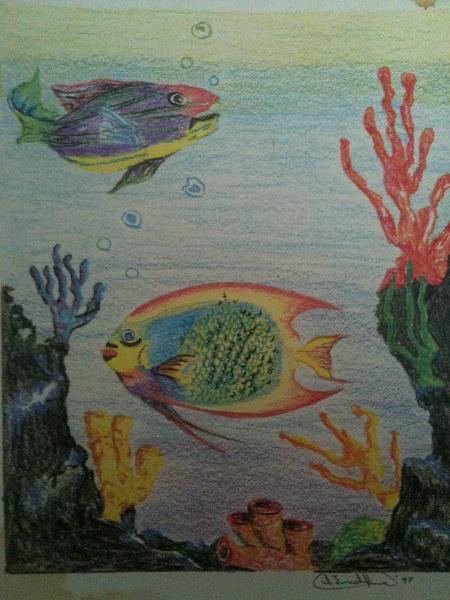 Fish Duet Design