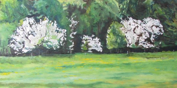 The Flowering Apple Trees