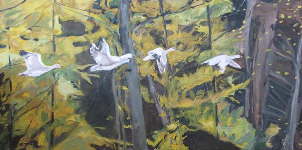 The Five Snow Geese