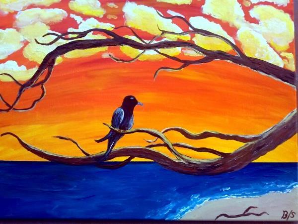 Black Gull