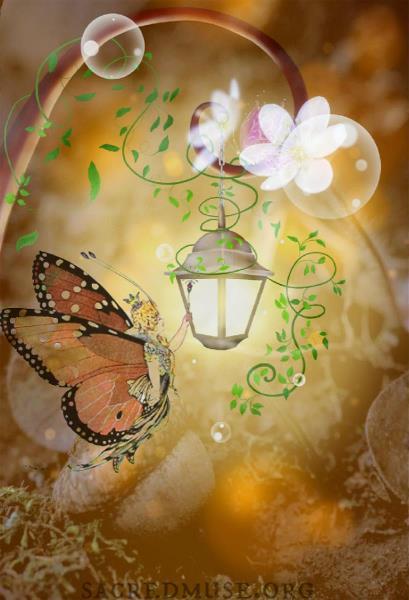 Fairy Lantern Illumination
