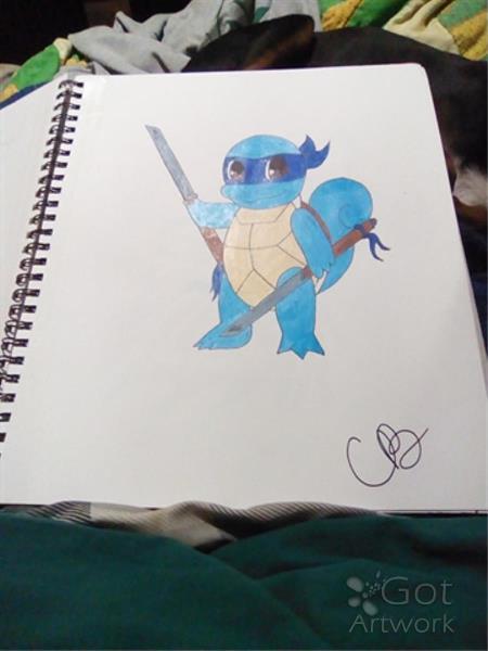 Ninja Turtle Squirtle
