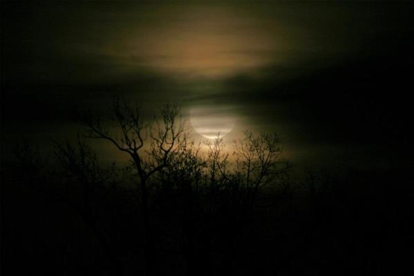Moon Over Prince George