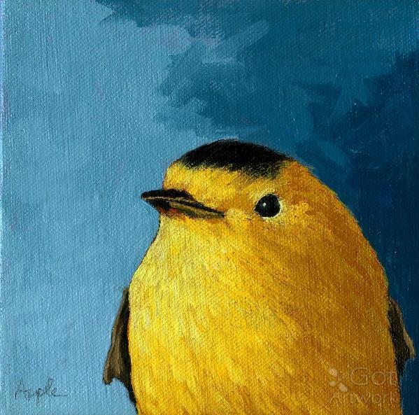 Baby Wilsons Warbler