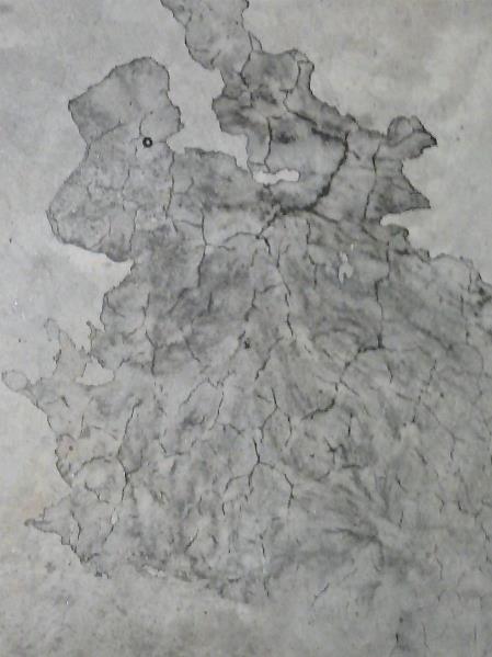 Cerebral In Concrete