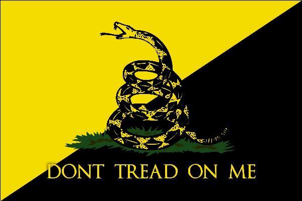 Anarcho Gadsden Flag