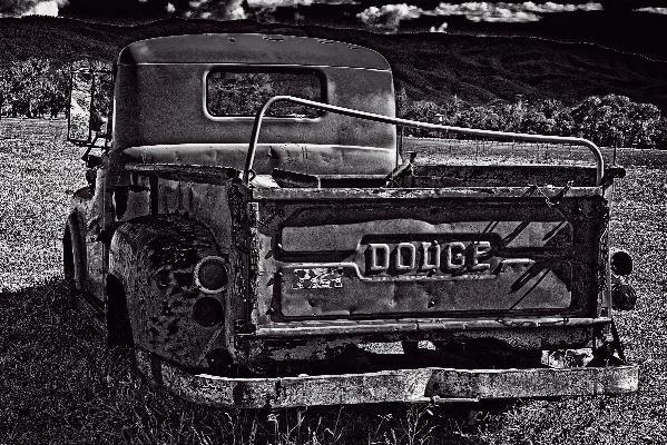 Dodge In The Zone