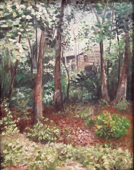Watauga Cabin