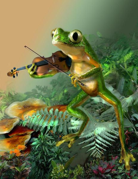 A Frog Fiddle Player