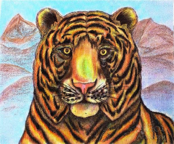 Bengaled Tiger Original Drawing