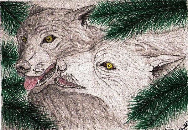 Wolves Forever