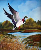 Bird As Framed Poster
