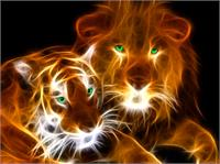 Lion_and