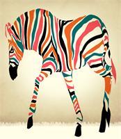 Zebrad 3 As Framed Poster