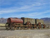Twenty-Mule-Train