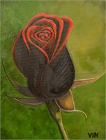A Rose Is Still A Rose