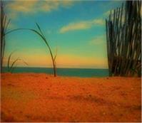 A Summer's Dusk