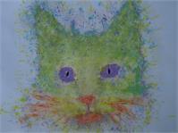 Rainbow Tomcat