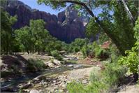 The River In Zion