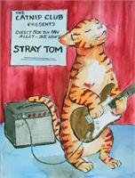 Stray Tom As Framed Poster