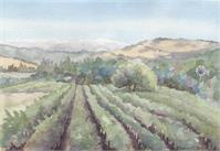 Bartholemew Vineyards As Framed Poster