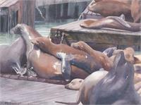 Sea Lions On San Francisco Docks As Framed Poster