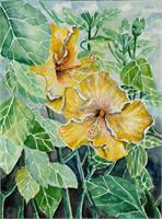 Hibiscus Flowers Tropical Exotic Art