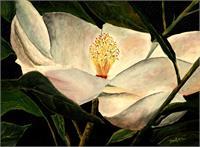 Magnolia Flower Acrylic Painting Art Print