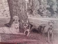 5 Dogs Under A Tree As Framed Poster