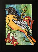 Baltimore Oriole As Poster