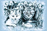 Cats Babies