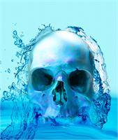 Skull In Water As Framed Poster