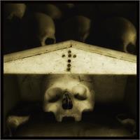 Skulls 1 - Augusto De Luca Photographer