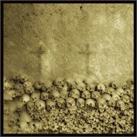 Skulls 2 - Augusto De Luca Photographer