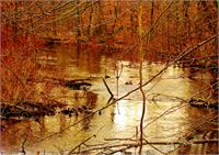 Russel Lake Mi