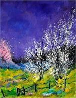 spring  452140