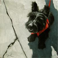 Scottie Dog - Market Day Dog Portrait