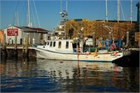 Fishing Boat And Docks In Newport Rhode Island
