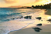 Golden Sunrise On Sapphire Beach St Thomas Virgin Islands Photograph By Roupen Baker