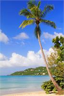 Magens Bay Beach St Thomas Virgin Islands Photograph By Roupen Baker