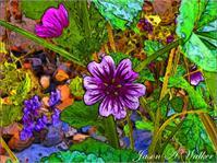 The Open Cartoon Flower As Framed Poster