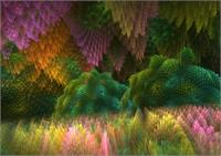 Magical Mystery Woods2