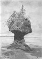 Hopewell Rock As Greeting Card