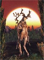 Incarnations Of The Wilderness I - ' The Druidess ' As Greeting Card