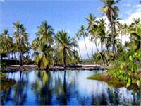 Pu' Uhonua O Honaunau Pond