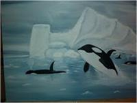 Artic Orcas