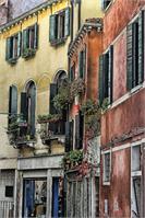 Venice V
