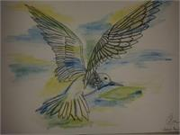 Bird Drawing With Aquarell