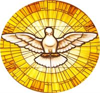 Dove Stain GLass