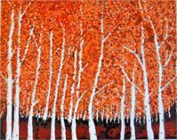 Birch Trees In Vermont